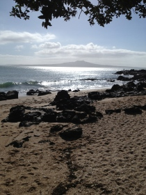 Taken on my morning walk between Milford and Takapuna Beaches.  It is one of my favourite places in the world and makes me smile.  ALOT.